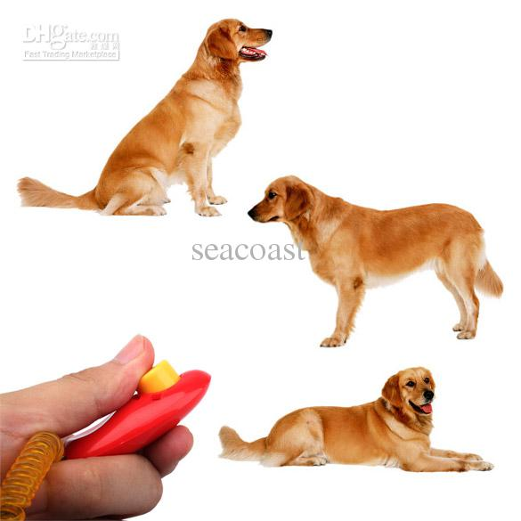 Where To Buy A Clicker For Dog Training